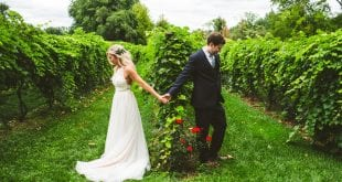 Boho Vineyard Wedding